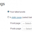 disable static front page wordpress
