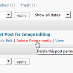 How To Disable Trash in WordPress